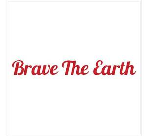Internship at Brave The Earth