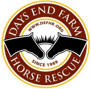 Internship at Days End Farm Horse Rescue