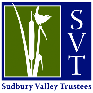 Internship at Sudbury Valley Trustees