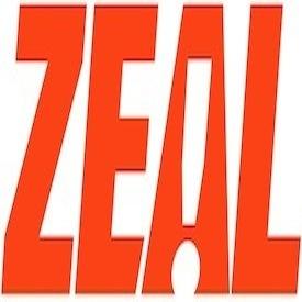 Internship at ZEALnyc.com