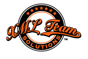 Internship at XML Team Solutions