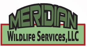 Internship at Meridian Wildlife Services