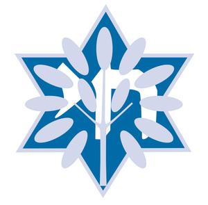 Internship at Jewish Community Foundation NEFL
