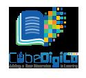Internship at Cubedigico Incorporated