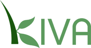 Kiva Interns Logo