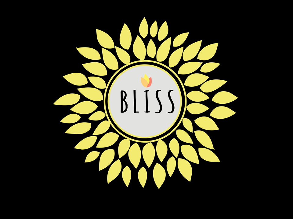 BLISS USA Interns Logo