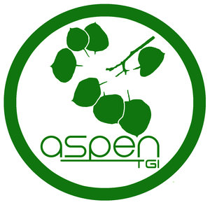 Internship at Aspen Technology Group