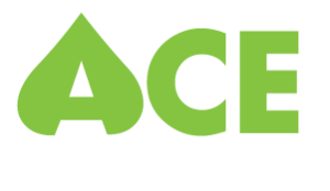 Entry-Level Job at Ace Management, Inc