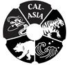 Internship at California-Asia Business Council