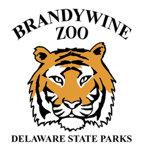 Internship at Brandywine Zoo