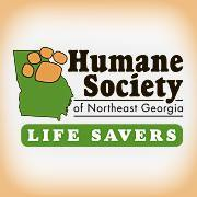 Internship at Humane Society of Northeast Georgia