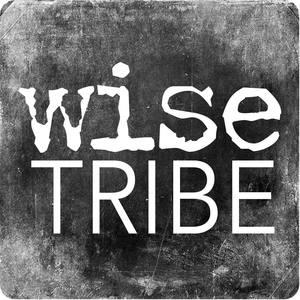 Internship at WiseTribe