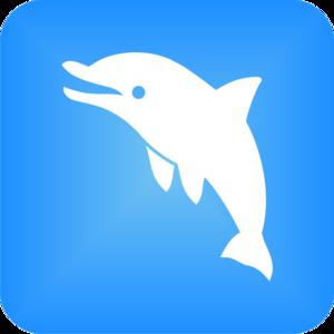 Internship at Dolpin App