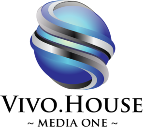 Internship at Vivo House Inc.
