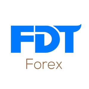 Internship at Financial Data Technologies Inc