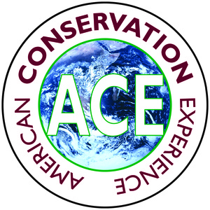 Internship at American Conservation Experience
