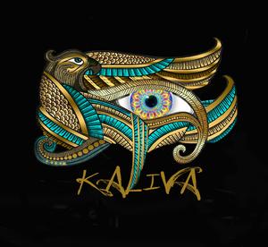 Internship at Kaliva