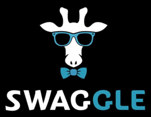Internship at Swaggle