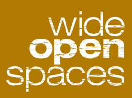 Internship at Wide Open Spaces