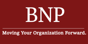 Internship at B Non-Profits BNP, Inc.