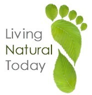 Internship at Living Natural Today