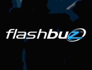 Internship at Flashbuz