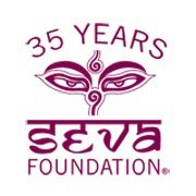 Internship at Seva Foundation