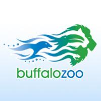 Internship at Buffalo Zoo
