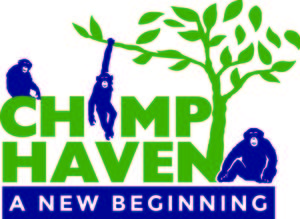 Internship at Chimp Haven Inc.