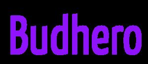 Internship at Budhero