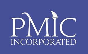 Internship at PMIC Inc.