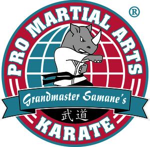 Internship at PRO Martial Arts