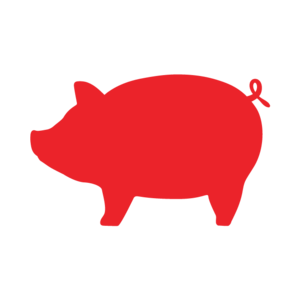 Internship at Red Pig Video